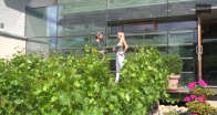 Winery Walter&Erich Polz